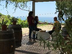 Aperitif amongst vineyards