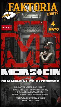 MEINSTEIN- RAMMSTEIN LIVE EXPERIENCE