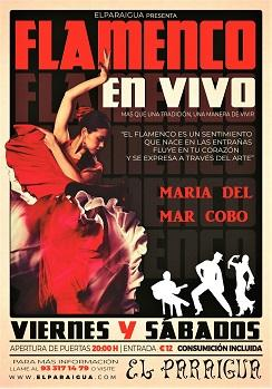 Flamenco: Maria del Mar Cobo en El Paraigua