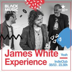 JAMES WHITE EXPERIENCE