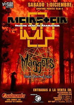 MEINSTEIN + MAGGOTS