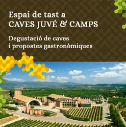 ESPAI CAVES JUVÉ & CAMPS